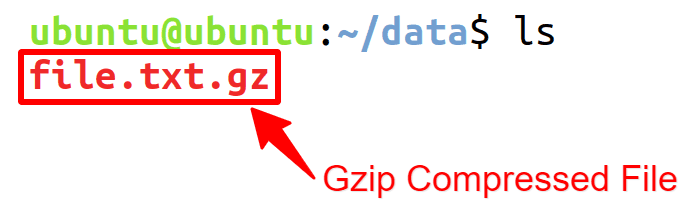 Compress a File using gzip Command