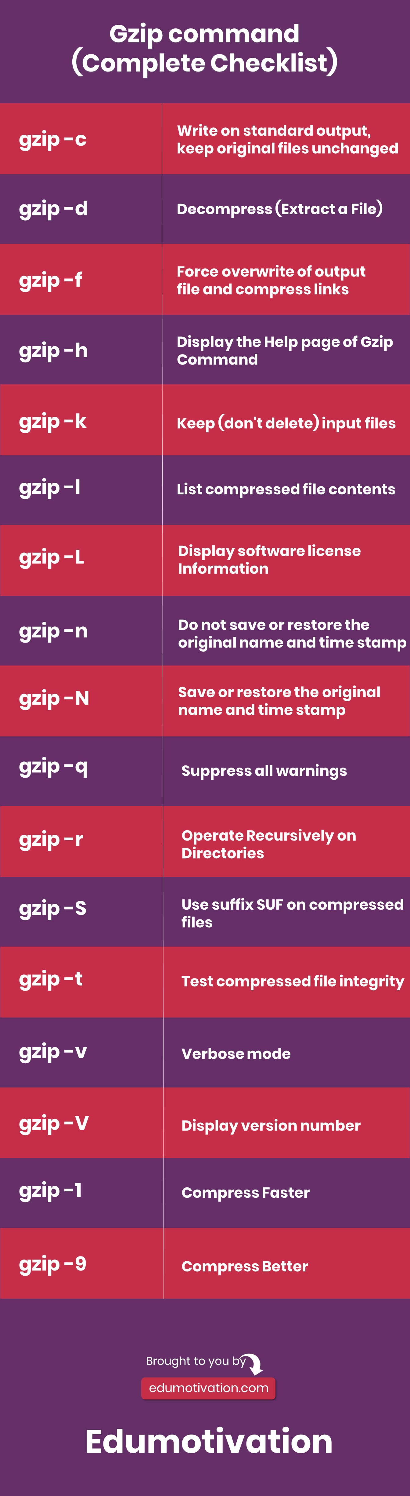 Gzip Command Infographic