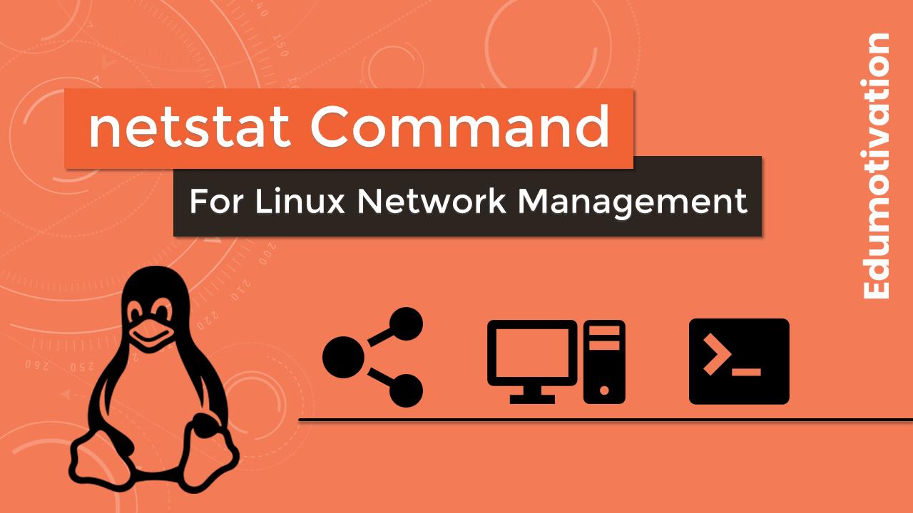 Best Netstat Commands