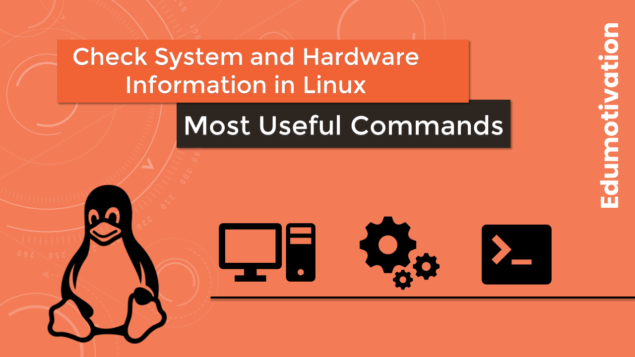 Commands to check System and Hardware Information in Linux